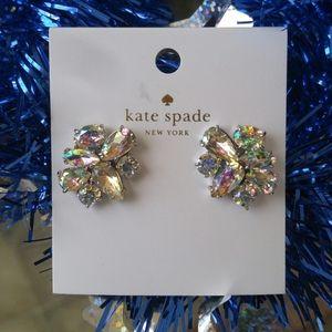 🎅 Kate Spade Rhinestone Earrings